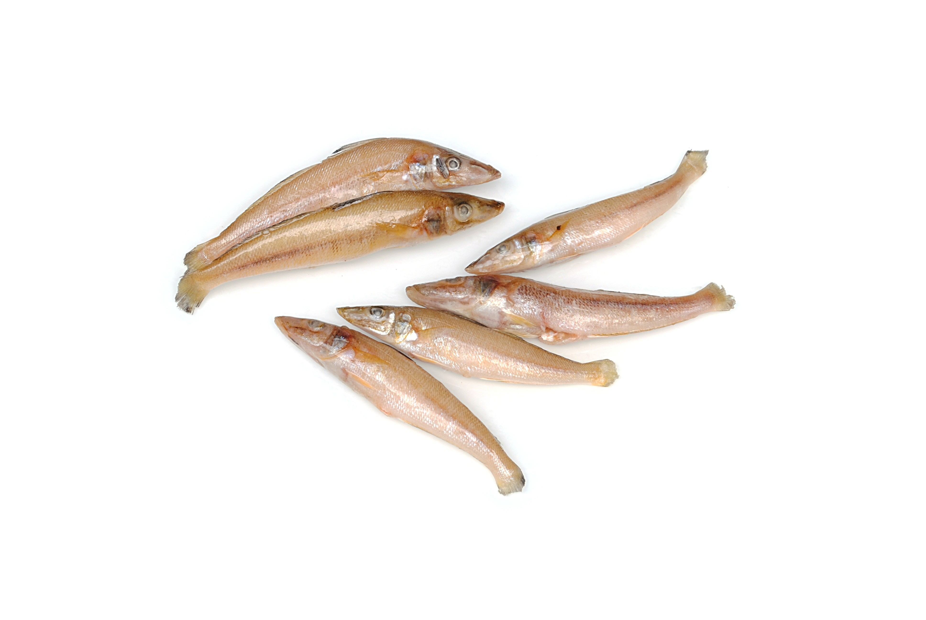 Jona Ladyfish/Silver Silago/Kilakan Gutted 20/30 10x1 kg-IN