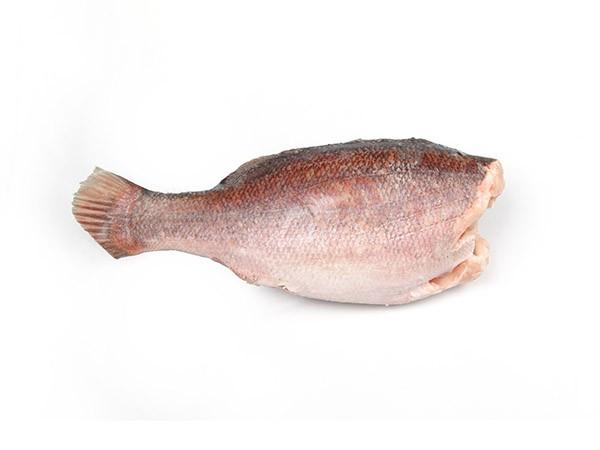 Nileperch/Lates Niloticus HG 1-3 Kg 20 kg 100% NW-UG