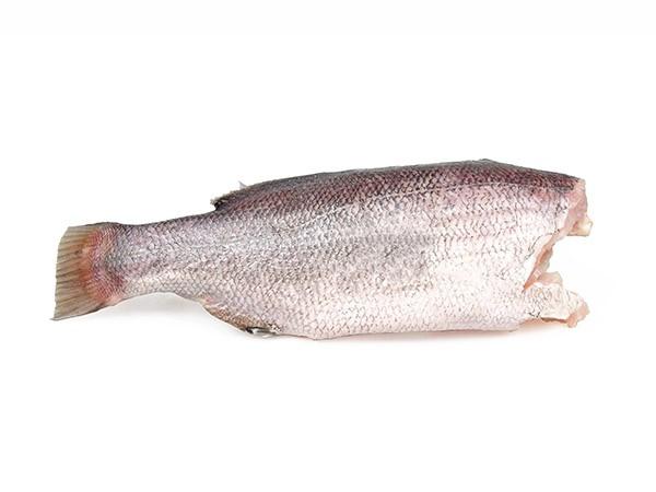 Nileperch/Lates Niloticus HG 3-7 Kg 20 kg 100 % NW-UG