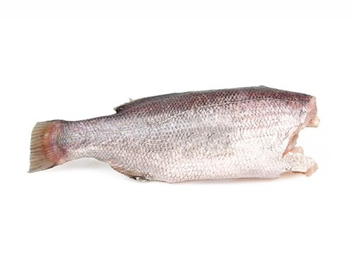 Nileperch/Lates Niloticus HG 3-7 Kg 20 kg 100 % NW-UG