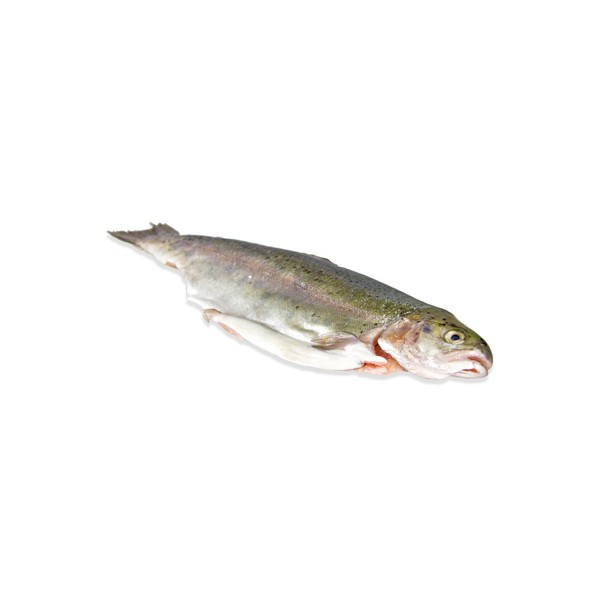 Jona Rainbow Trout WGS IQF 200-300gr 12 x 800 g 20 %-TR