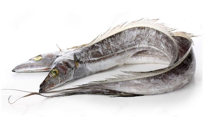 Ribbonfish / silverbelt WR 400-1000 1 x 10 kg-SR