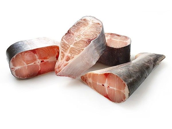 Pangasius steaks BIG (4-5) JONA 150-250 VAC 10x1 kg 20%-VN