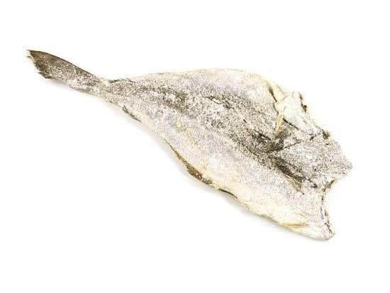 Sole DS Tusk -Brosme Brosme- 21/30 3 Kg - NO