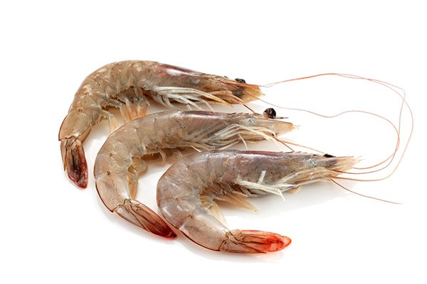 Vannamei shrimps HOSO 40/50 12 x 1 kg 20% -EC