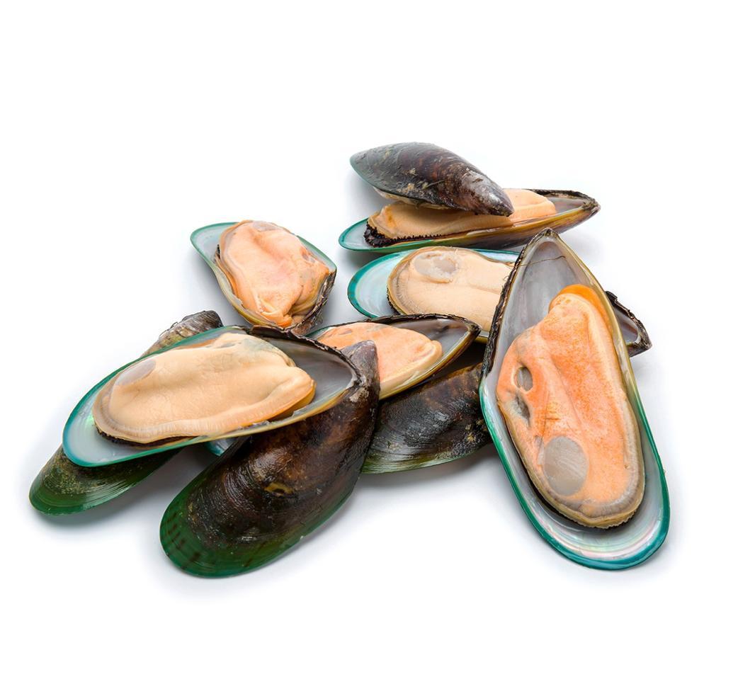 Mussels halfshell large 20/30 12 x 1 kg 0%-NZ