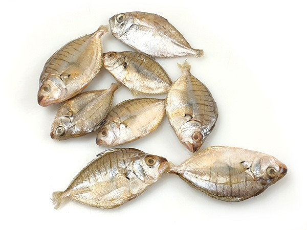 Pony fish / Mullan Whole Round 20 gr+ 10 x 1 kg - IN