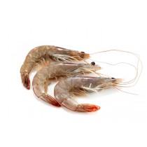 Vannamei shrimps HOSO 50/60 12 x 1 kg 25% -EC