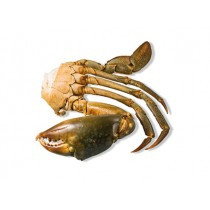 MEDIUM Cut mangrove Crab (8-12 pc/kg) 12 x 1 kilo-MG