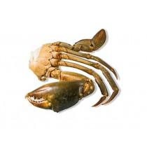 MEDIUM Cut mangrove Crab (8-12 pc/kg) 12 x 1 kilo-MG