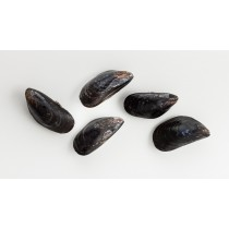 Whole Cooked Mussels 40/60 5 x 1 kilo-CL