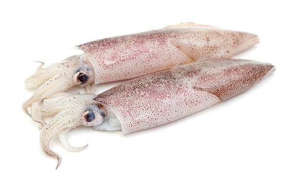 Squid Whole Loligo Duvauceli 6-10 6 x 2 kg 10%-IN